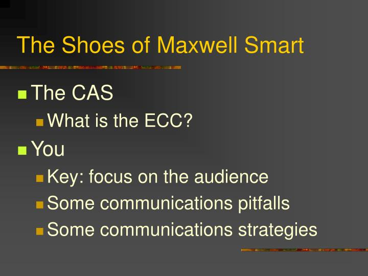 The shoes of maxwell smart