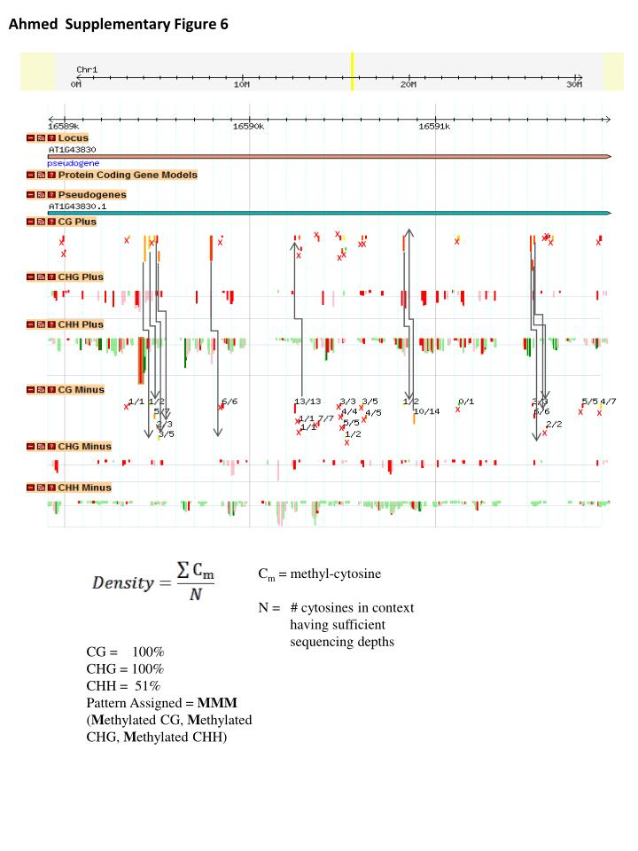 Ahmed  Supplementary Figure 6