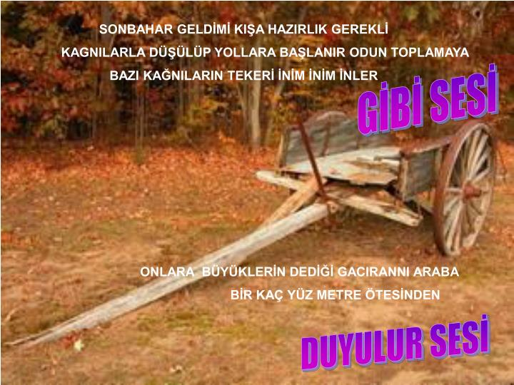 SONBAHAR GELDİMİ KIŞA HAZIRLIK GEREKLİ