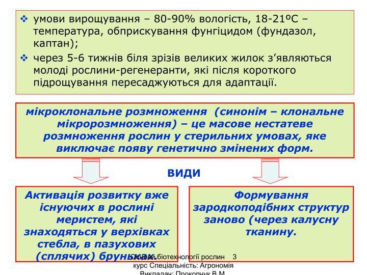 умови вирощування – 80-90% вологість, 18-21ºС – температура, обприскування фунгіцидом (фундазол, каптан);