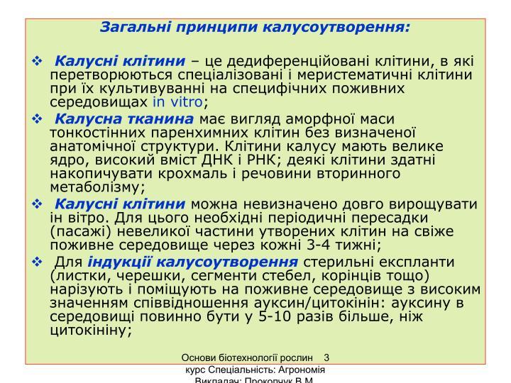 Загальні принципи калусоутворення: