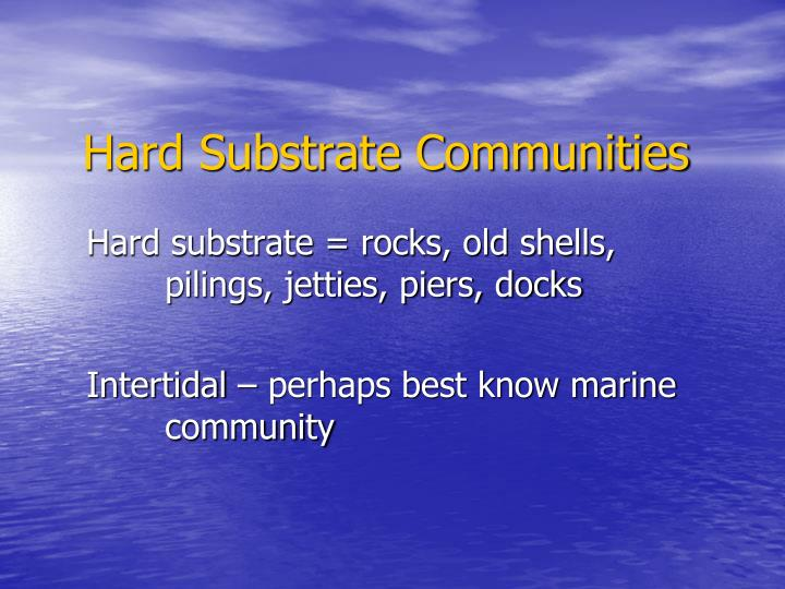 Hard Substrate Communities