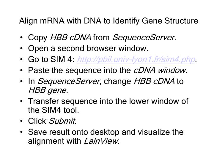 Align mRNA with DNA to Identify Gene Structure