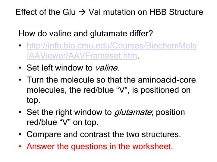 Effect of the Glu