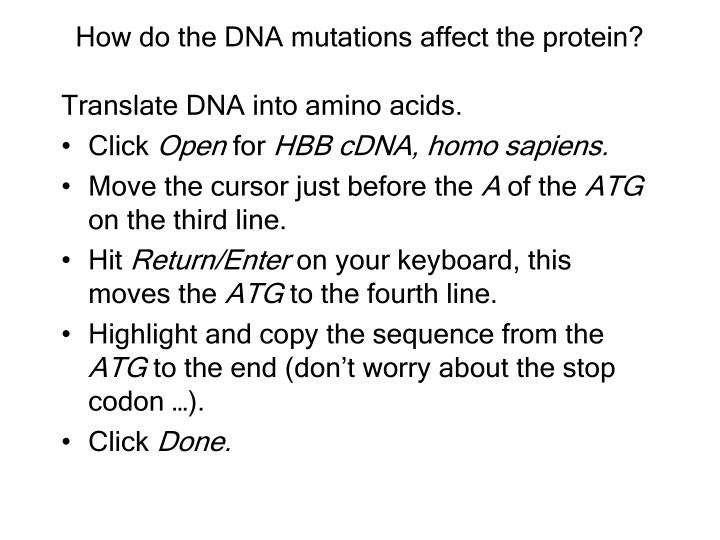 How do the DNA mutations affect the protein?