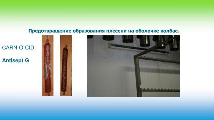 Предотвращение образования плесени на оболочке колбас.