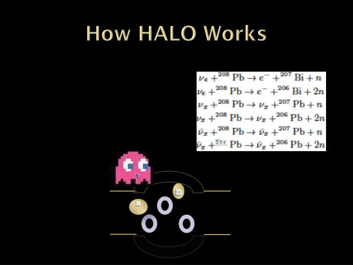 How HALO Works