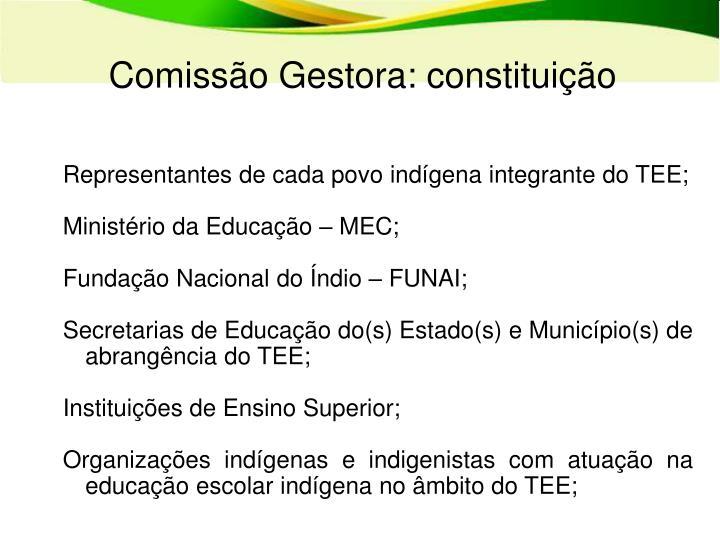 Comissão Gestora: constituição