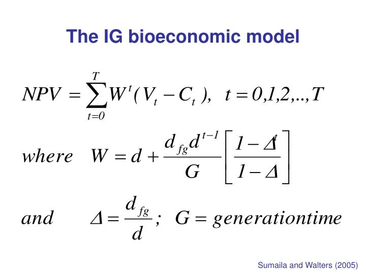 The IG bioeconomic model
