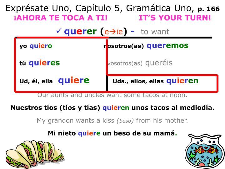 Exprésate Uno, Capítulo 5, Gramática Uno,