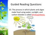 guided reading questions11