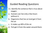 guided reading questions12