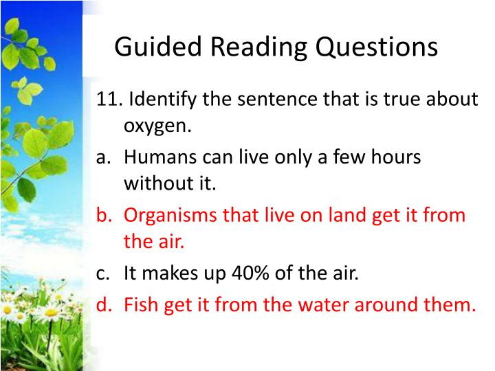 Guided Reading Questions