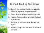guided reading questions5