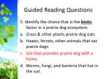 guided reading questions6