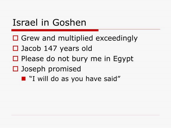 Israel in Goshen