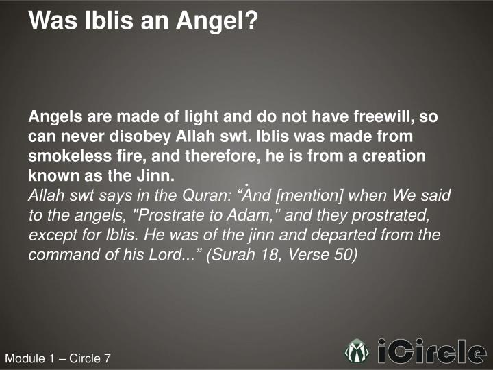 Was Iblis an Angel?