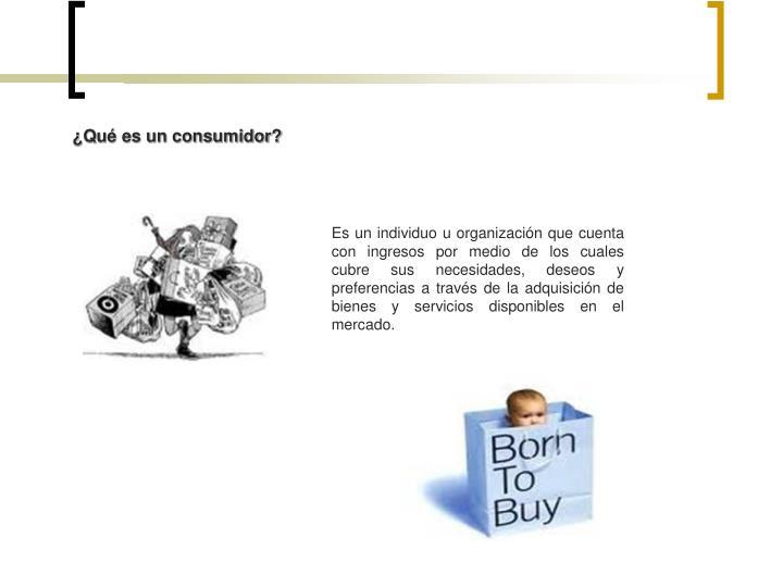 ¿Qué es un consumidor?