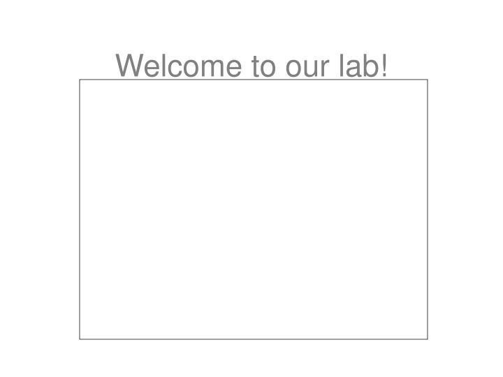 Welcome to our lab!