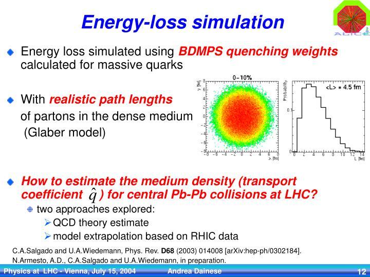 Energy-loss simulation