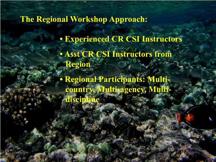 The Regional Workshop Approach:
