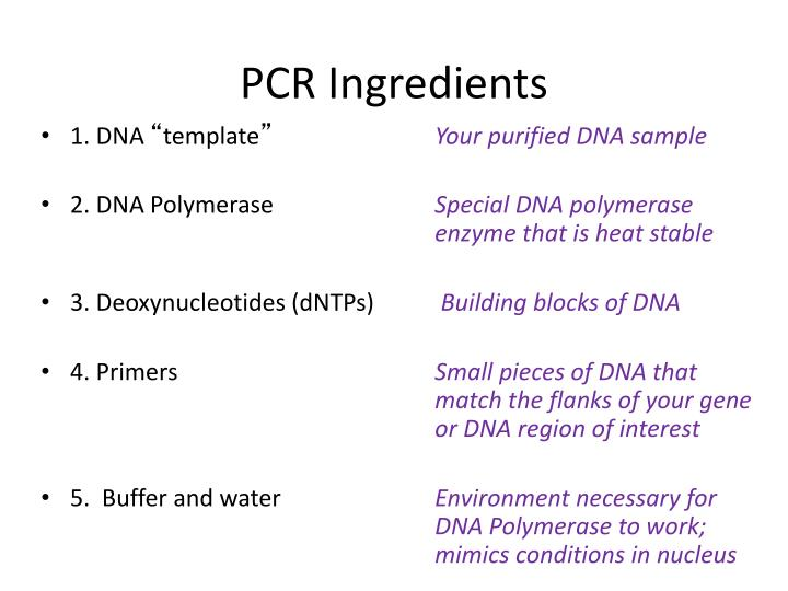 Pcr ingredients