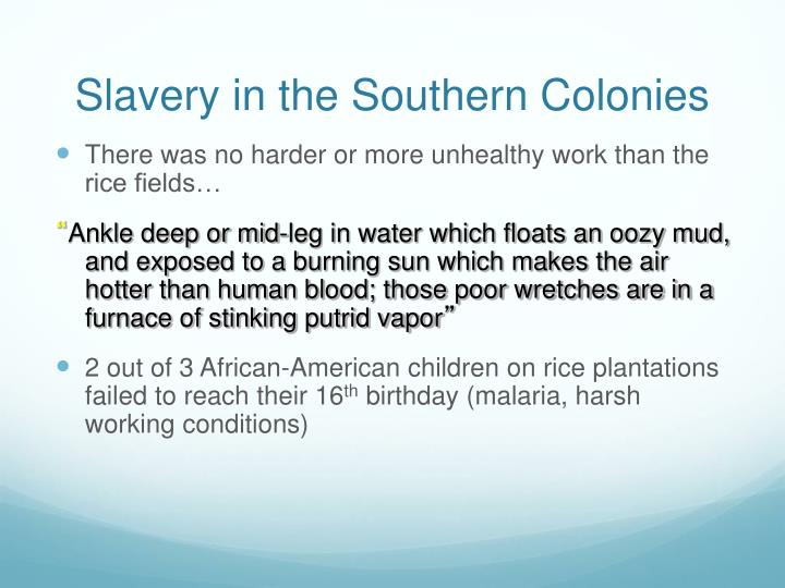 Slavery in the Southern Colonies
