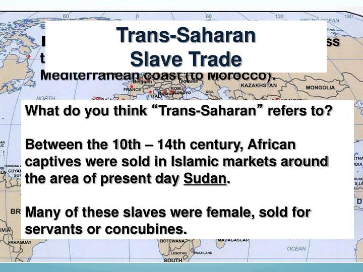 Trans-Saharan