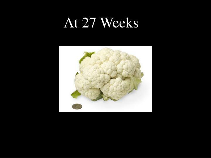 At 27 Weeks