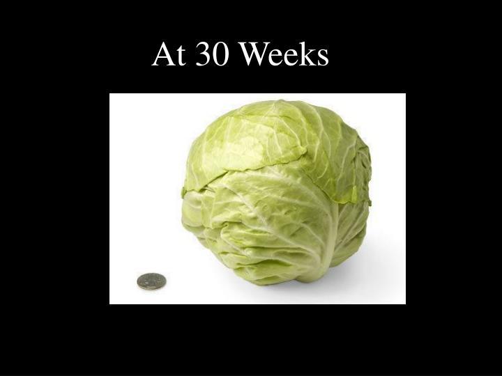 At 30 Weeks