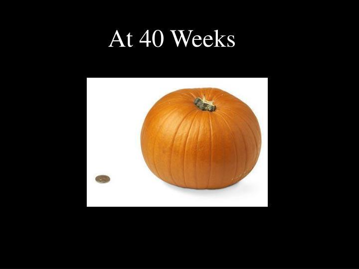 At 40 Weeks
