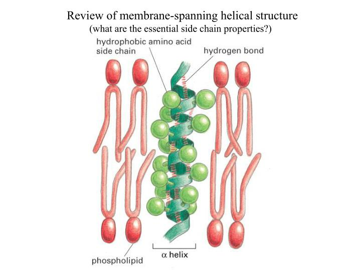 Review of membrane-spanning helical structure