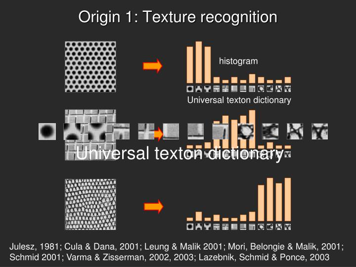 Origin 1: Texture recognition