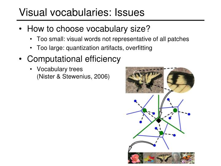 Visual vocabularies: Issues