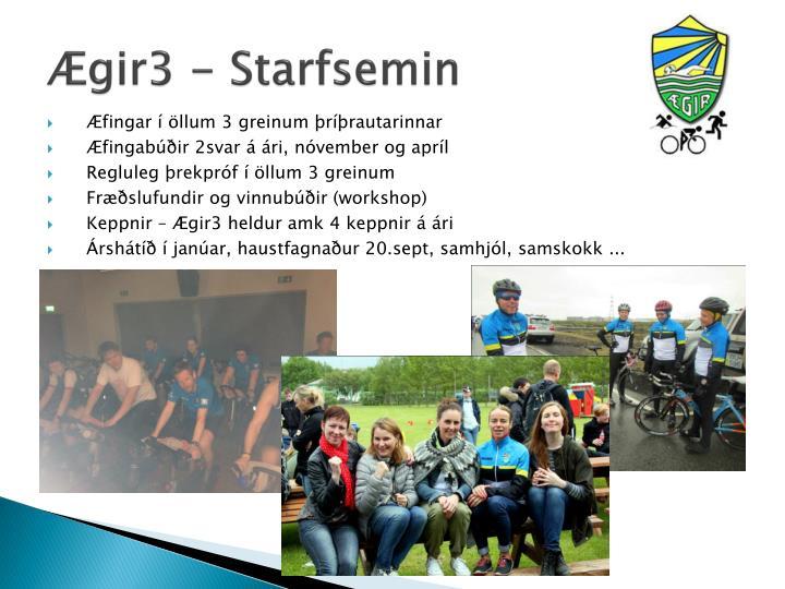 Ægir3 - Starfsemin
