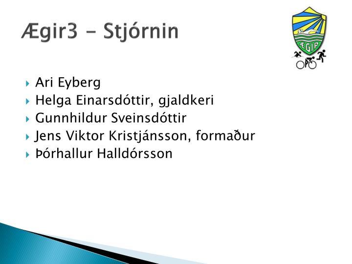 Ægir3 - Stjórnin