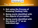 the illusions of separateness