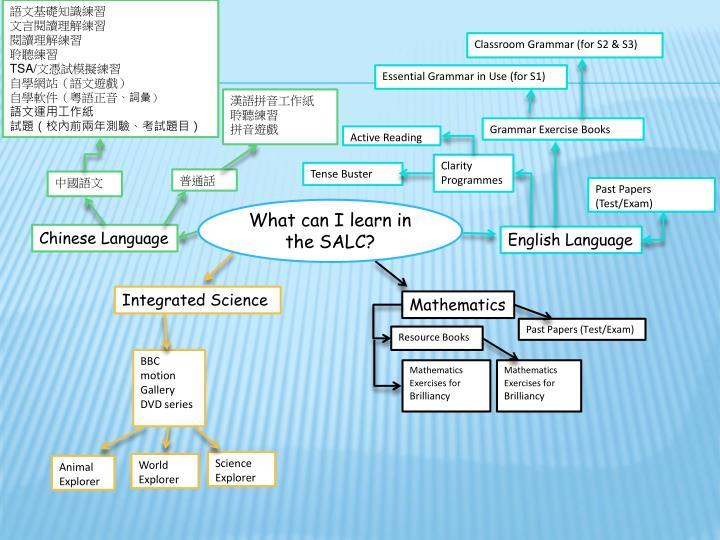 語文基礎知識練習