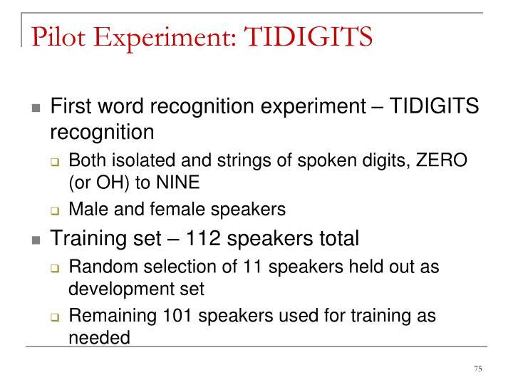 Pilot Experiment: TIDIGITS