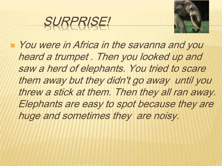 You were in Africa in the savanna and you heard a trumpet