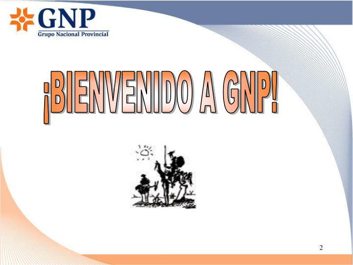 ¡BIENVENIDO A GNP!