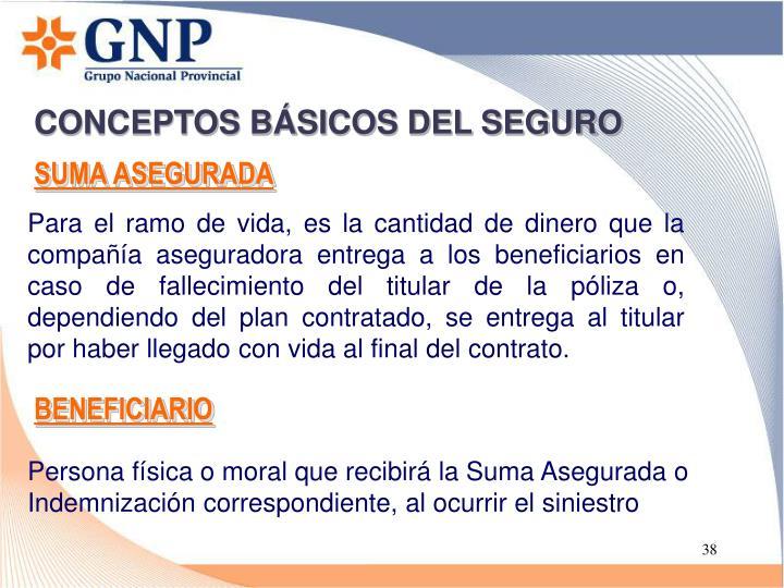 CONCEPTOS BÁSICOS DEL SEGURO