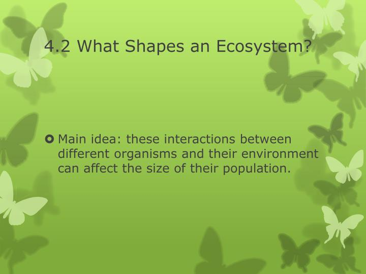 4.2 What Shapes an Ecosystem?