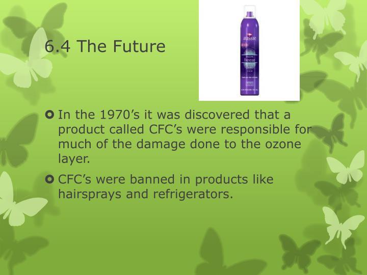 6.4 The Future