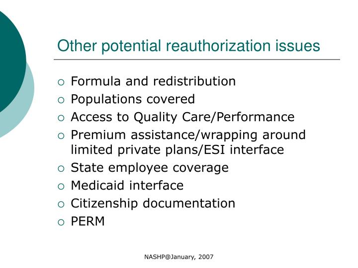 Other potential reauthorization issues
