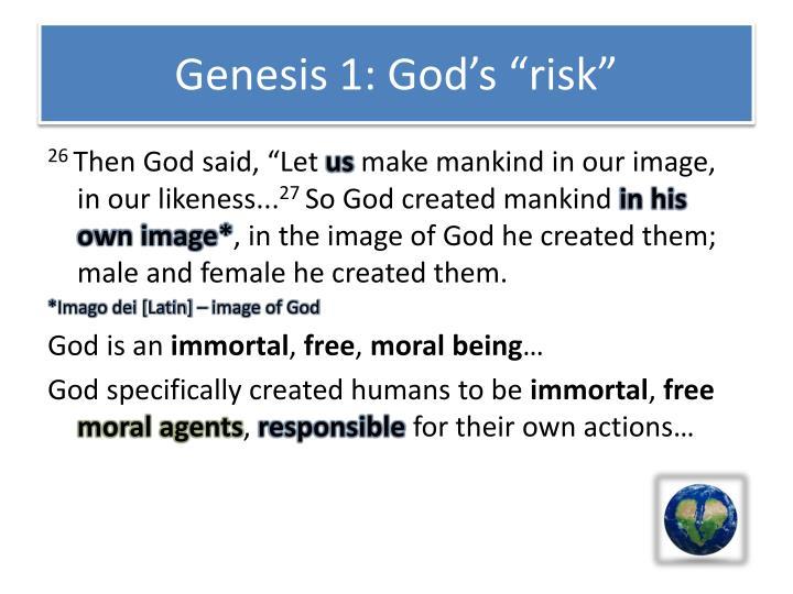 "Genesis 1: God's ""risk"""