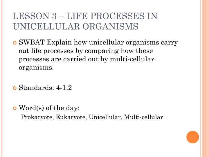 LESSON 3 – LIFE PROCESSES IN UNICELLULAR ORGANISMS