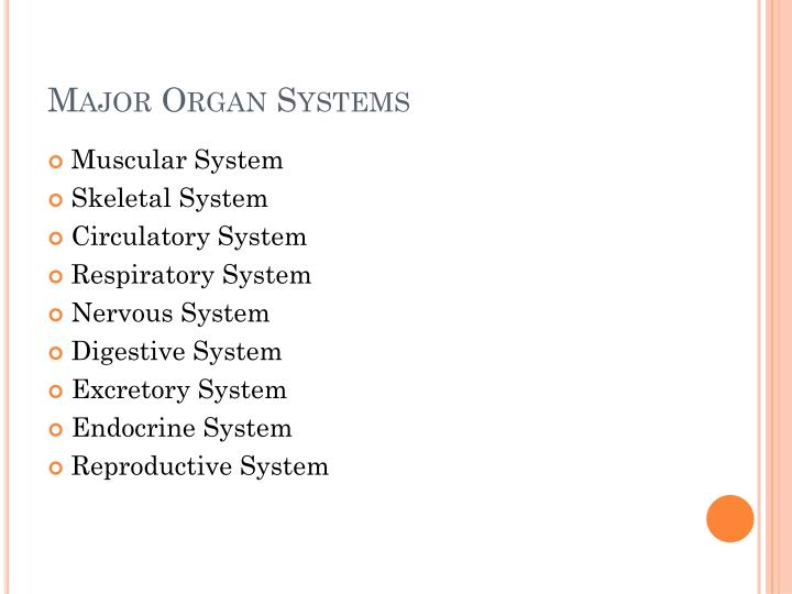 Major Organ Systems