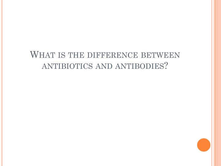 What is the difference between antibiotics and antibodies?