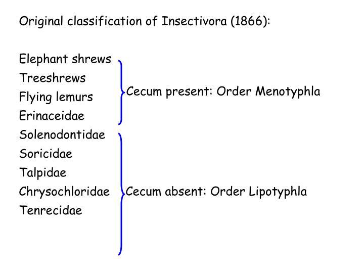 Original classification of Insectivora (1866):